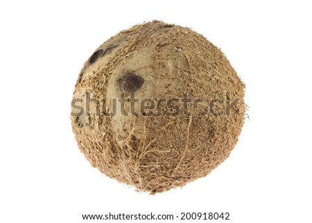 Brown coconut isolated on white background - stock photo