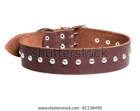 brown collar with rivets isolated over white background - stock photo