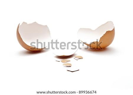 brown egg on white background - stock photo