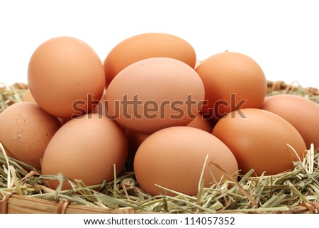 brown eggs in a nest of straw close-up