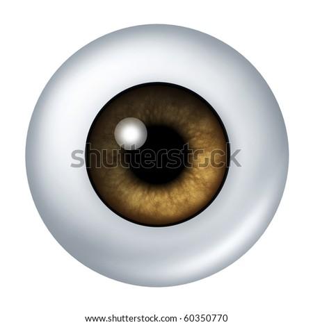 brown eye ball isolated on white - stock photo