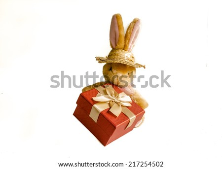 Brown fluffy rabbit doll with gift box on white background - stock photo