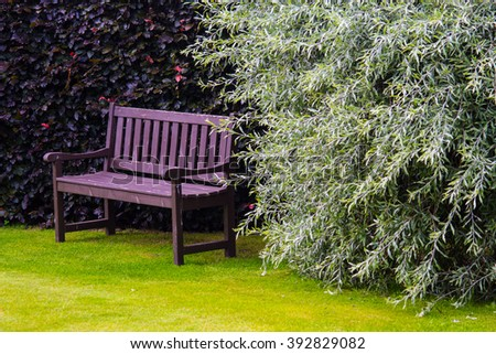 Brown garden bench with green grass  - stock photo