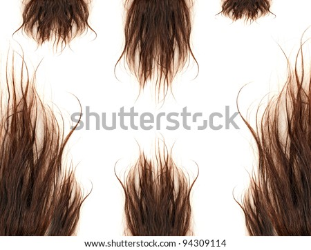 brown hair isolated on the white background - stock photo