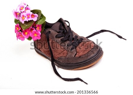 Brown male shoe with flowers inside isolated