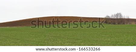 Brown plowed soil stripe near green wheat culture in a rural landscape - stock photo