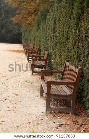 Brown row of benches in the park