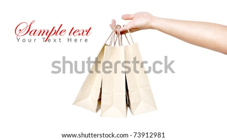 brown shopping bag in a woman hand isolate - stock photo