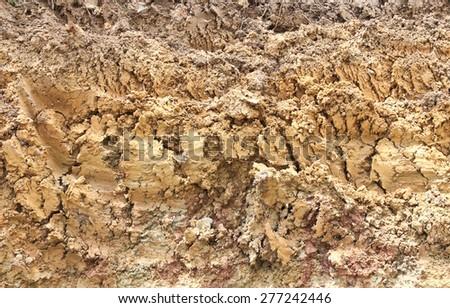 Brown soil. - stock photo