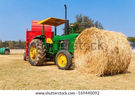 Brown Straw On Green Grass - stock photo