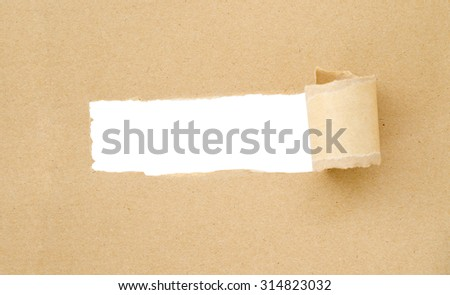 Brown Torn Paper with space for text with white background save clipping path. - stock photo