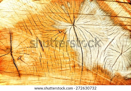 Brown wood wooden knot texture or background