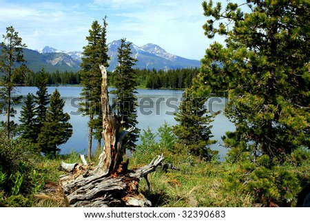 Bruce Mines Lake, southwestern Alberta, Canada; view of lake, mountains beyond; old tree stump in foregrond - stock photo