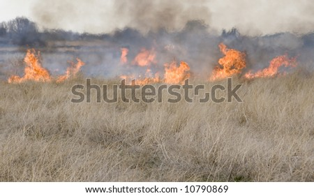 Brush Fire - stock photo