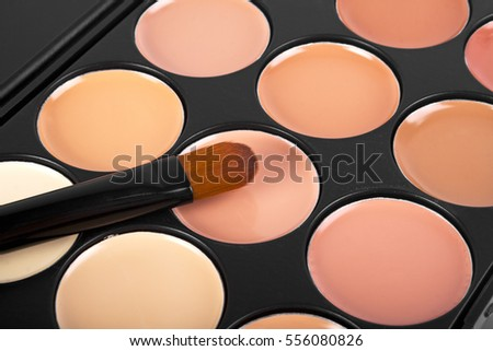 Brush for concealer and a palette of professional makeup concealer,  close up image