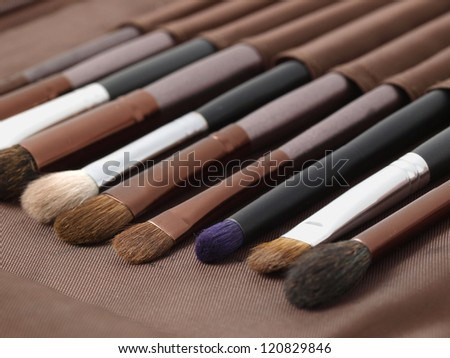 Brushes in a row. The photo shows many makeup brushes.