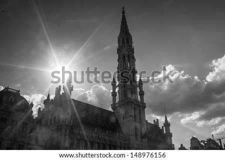 brussels city hall in the summer sun in black and white
