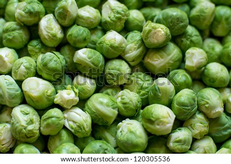 Brussels sprouts background - stock photo