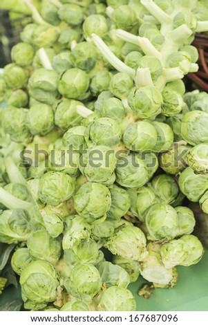 Brussels sprouts in food and vegetable market, food