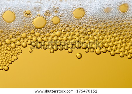 Bubbles and foam in a beer
