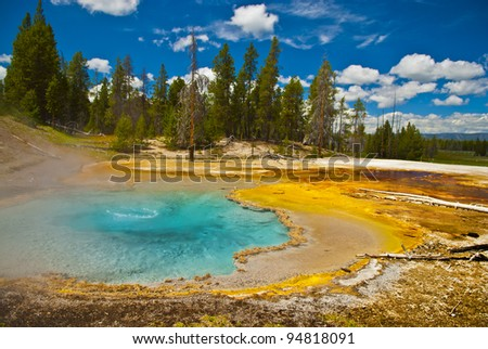 Bubbly hot water in the geyser on sunny summer day - stock photo