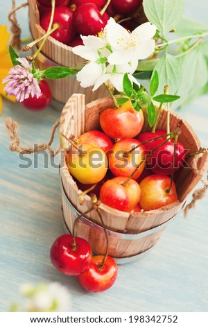 Bucket of red and yellow cherries on blue wooden background with summer flowers and herbs - stock photo