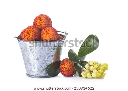 Bucket with arbutus unedo fruits, leaves and flowers isolated on a white background - stock photo
