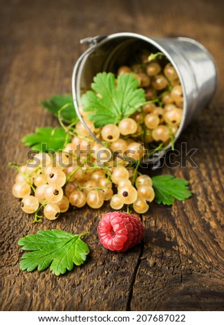 bucket with white currants on a wooden background