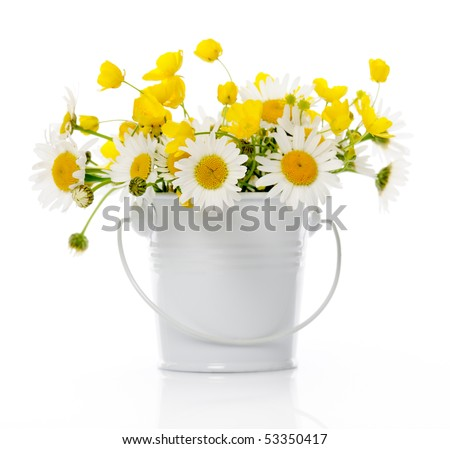 bucket with wildflowers on white - stock photo