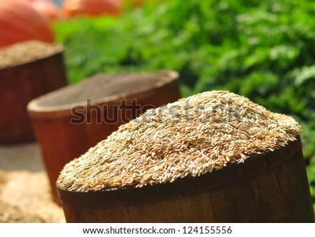 Buckets of seeds - stock photo