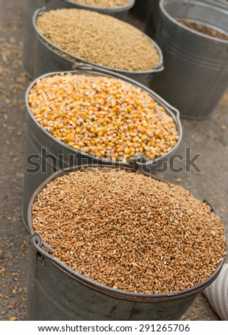 how to cook barley grain