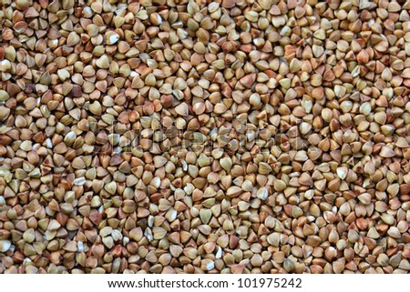 Buckwheat - one of the most useful herbs. It contains the most important nutrients that body needs