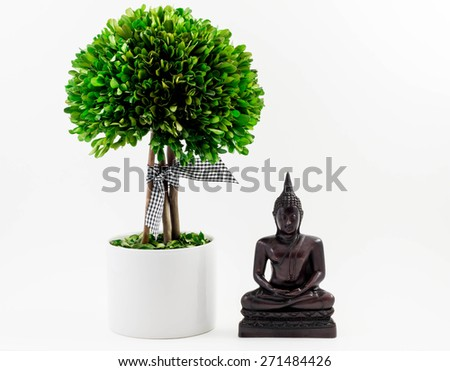 Buddha and Green planted tree, Isolated on white - stock photo