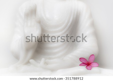 Buddha blessing pose with flower - stock photo