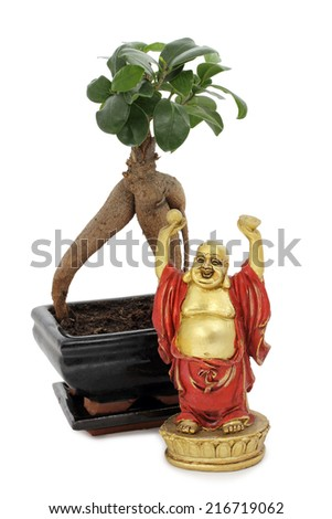 Buddha figurine in front of a bonsai on white background - stock photo