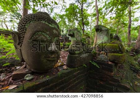 Buddha head In Wat Umong Chiangmai, Thailand. - stock photo