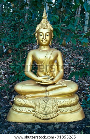 Buddha image in the attitude of meditation
