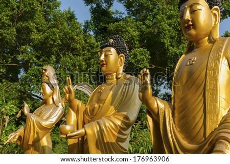 Buddha Statue in Ten Thousand Buddhas Monastery in Hong Kong - stock photo