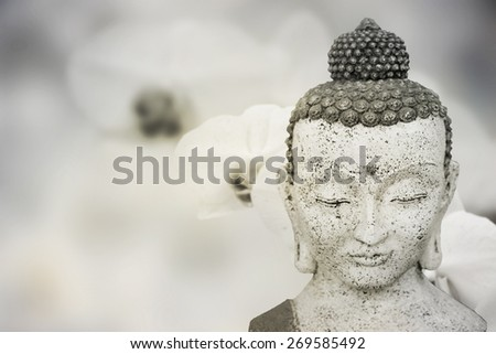 Buddha with orchis - stock photo