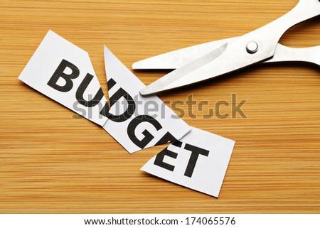 Budget cut - stock photo