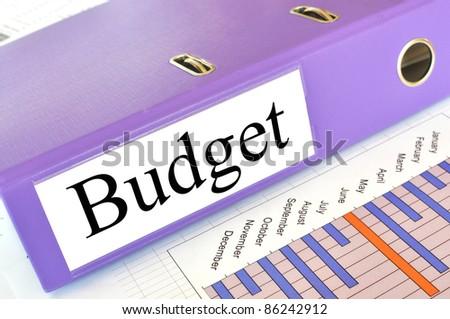 BUDGET folder on a market report - stock photo