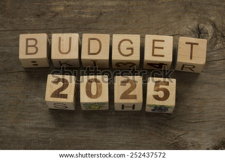 Budget for 2025 wooden, blocks on a wooden background - stock photo