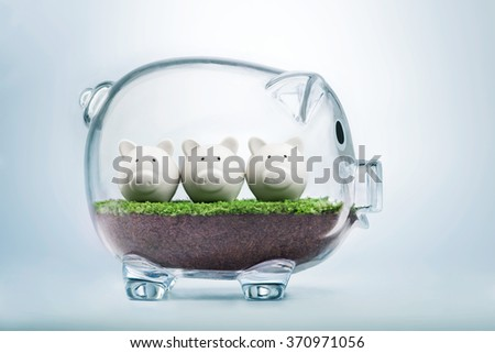 Budget planning and allocating money concept with piggy bank - stock photo