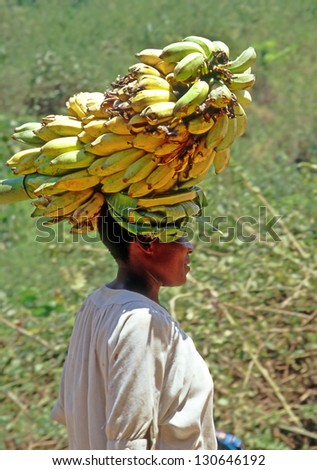 BUIKWE REGION, UGANDA - JULY 26: An unidentified farmers carry bananas for sale on July 26, 2004 in Buikwe region, Uganda. People in rural areas of Uganda depend on farming. - stock photo
