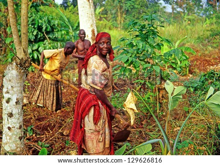 BUIKWE REGION, UGANDA - JULY 26: An unidentified farmers working on their fields on July 26, 2004 in Buikwe region, Uganda. People in rural areas of Uganda depend on farming. - stock photo