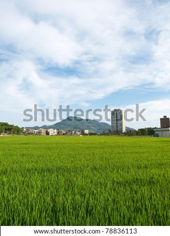 building and grass