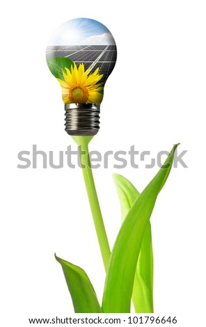 Bulb with of solar panel isolated - stock photo
