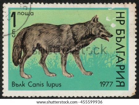 "BULGARIA - CIRCA 1987: A post stamp printed in Bulgaria shows a series of images ""Animal world"", circa 1987 - stock photo"