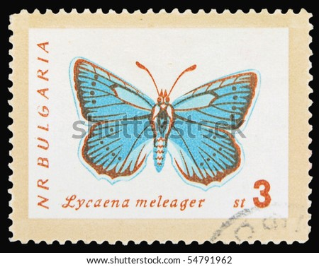 BULGARIA - CIRCA 1960: A stamp printed in Bulgaria showing Lycaena meleager butterfly, circa 1960