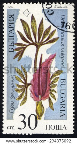 Bulgaria - CIRCA 1989: A stamp printed in Bulgaria shows a series of images spring flowers, circa 1989 - stock photo